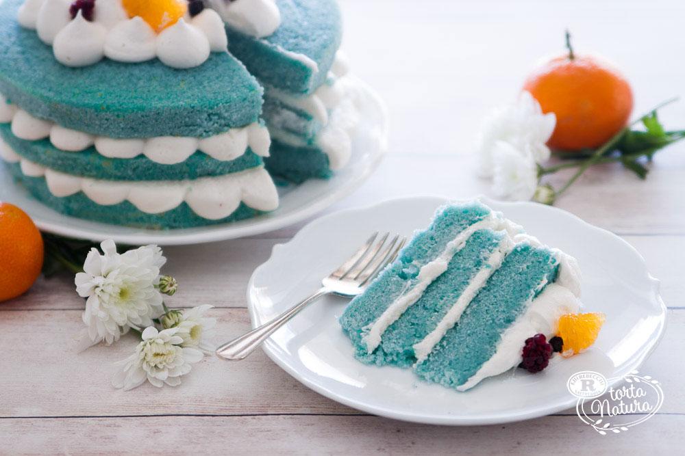 Ricette per Torta Natura Rebecchi
